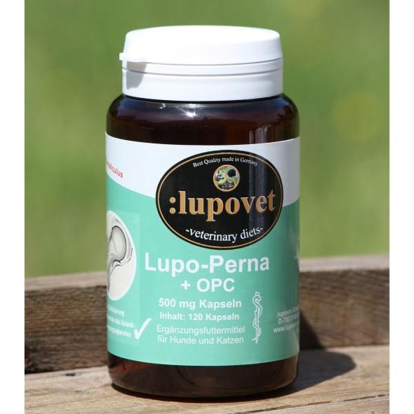 LupoPerna + OPC
